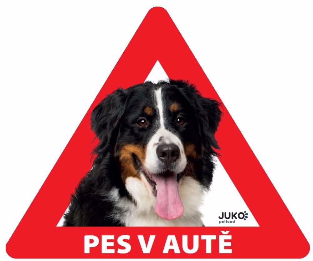 Samolepka pes v autě vnitřní - bernský salašnický