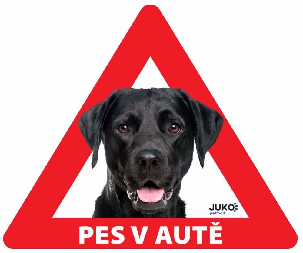 Samolepka pes v autě venkovní - labrador černý