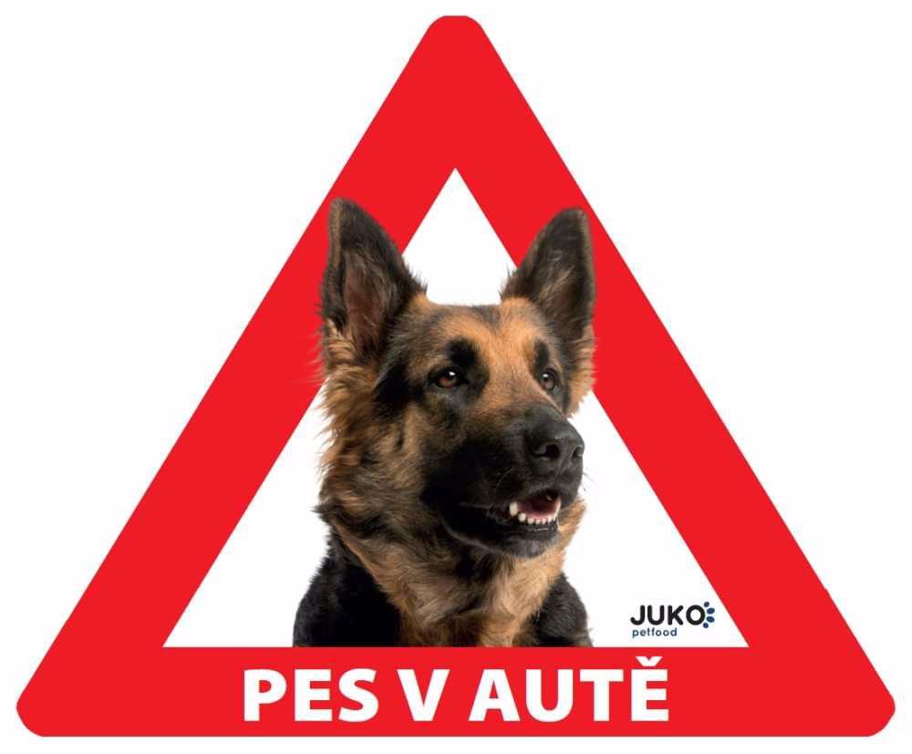 samolepka-Pes v autě venkovní-NĚMECKÝ OVČÁK-13903