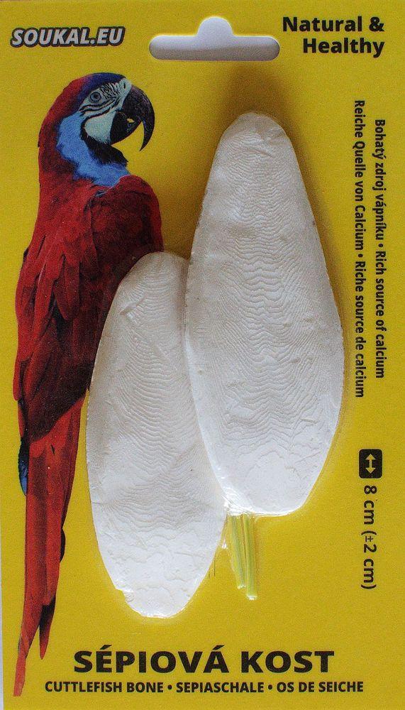 Sépiová kost na kartě cca 8 cm (2 ks)
