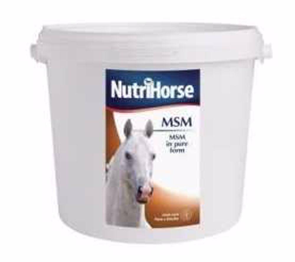 Nutri Horse MSM kůň 1 kg